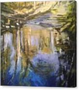 Puffers Pond Canvas Print