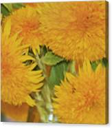Puffy Golden Delight Canvas Print