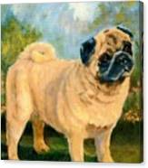 Pug In The Park Canvas Print