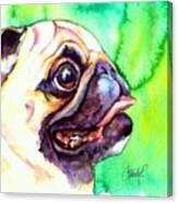 Pug Profile Canvas Print