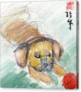Puggle With Red Ball Canvas Print