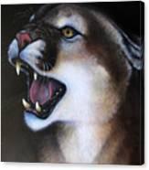 Puma II Canvas Print