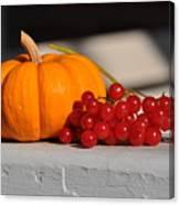 Pumpkin N Berries Canvas Print