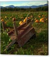 Pumpkin Patch. Canvas Print