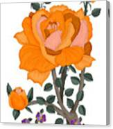 Pumpkin Rose And Violas Canvas Print