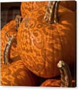 Pumpkins And Lace Shadows Canvas Print