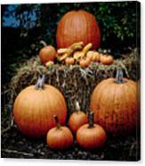 Pumpkins In The Dark Canvas Print