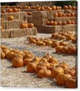 Pumpkins On Bales Canvas Print