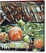 Pumpkins On Roof Canvas Print