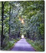 Pumpkinvine Trail In Fall Canvas Print