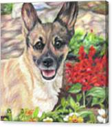 Pup In The Garden Canvas Print