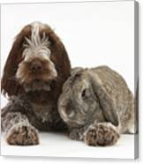 Puppy And Rabbt Canvas Print