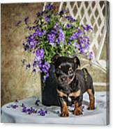 Puppy Dog With Flowers Canvas Print