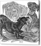 Puppy Love - Doberman Pinscher Pup Canvas Print