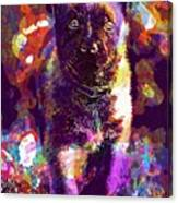 Puppy Sweet Cute Dog Young Animal  Canvas Print