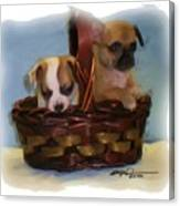 Pups In A Basket Canvas Print