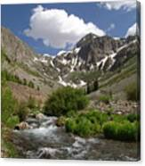 Pure Mountain Beauty Canvas Print