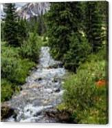 Pure Rocky Mtn. Spring Water Canvas Print