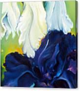 Purple And White Canvas Print