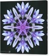 Purple And White Frosted Queen Mandala Canvas Print