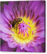 Purple And Yellow Lotus With A Bee Textured Canvas Print