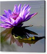 Purple Beauty On The Pond Canvas Print