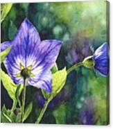 Purple Bell Flower Canvas Print