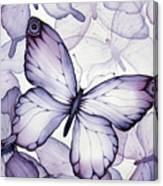 Purple Butterflies Canvas Print