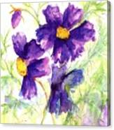 Purple Cosmos Canvas Print