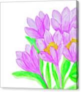 Purple Crocuses, Painting Canvas Print