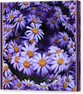 Purple Daisy Abstract Canvas Print