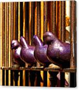 Purple Doves 1 Canvas Print