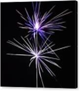 Purple Fireworks  Canvas Print
