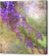 Purple Flowers 8621 Idp_2 Canvas Print