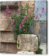 Purple Flowers In Ruins Canvas Print