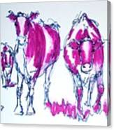 Purple Friesian Holstein Cows Drawing Canvas Print