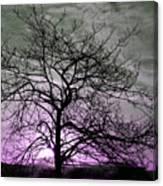Purple Haze Across The Sky Canvas Print