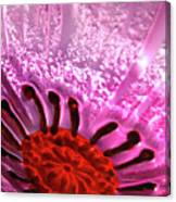 Purple Haze Canvas Print