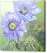 Purple Hedgehog Canvas Print