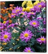 Purple In Garden Canvas Print
