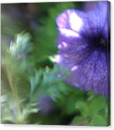 Purple In Monets Garden Canvas Print