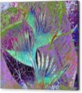 Purple Infusion  Canvas Print