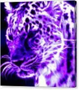 Purple Jaguar Canvas Print