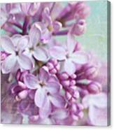 Purple Lilacs With Text Canvas Print