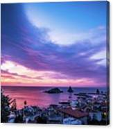 Purple Morning Canvas Print