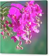 Purple Orchid Branch Canvas Print
