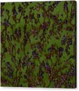 Purple Paragon In Green  Canvas Print