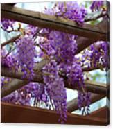 Purple Trellis Canvas Print