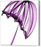 Purple Umbrella Canvas Print