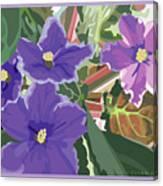 Purple Violets Canvas Print